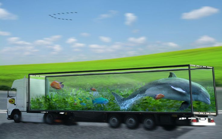 Unique Truck Aquarium Design ~ http://www.lookmyhomes.com/pick-one-of-unique-aquariums-design-ideas-for-your-fish/