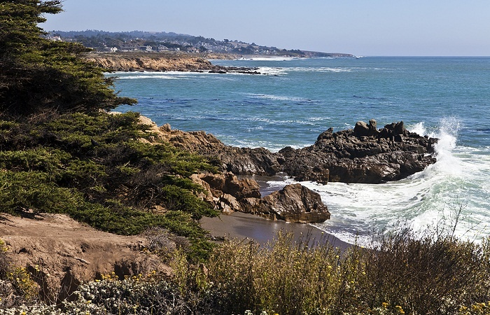 Cambria, California, has plenty to offer for vacationers!