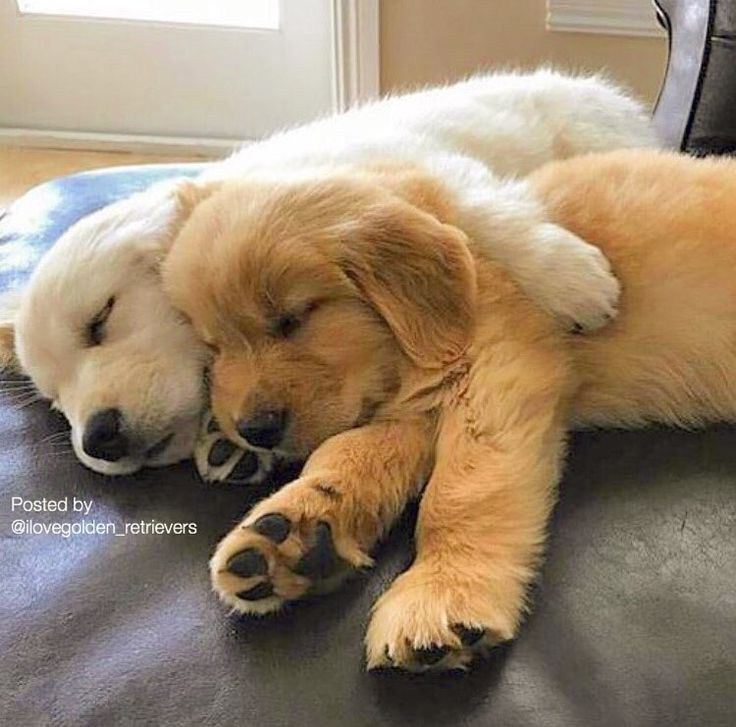 When cuddles with bae make your worries go away