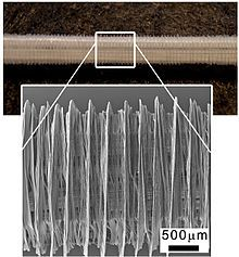 Melt electrospinning - Wikipedia, the free encyclopedia