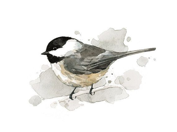 Chickadee watercolor painting - 5x7 bird print  I love watercolor birds, usually bc they're colorful but i love chickadees too $18