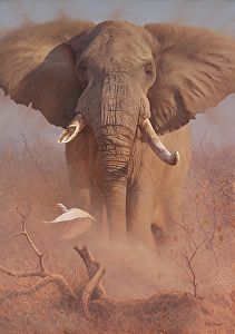 Classic by Peter Stewart Oil ~ 50 inches x 35 inches