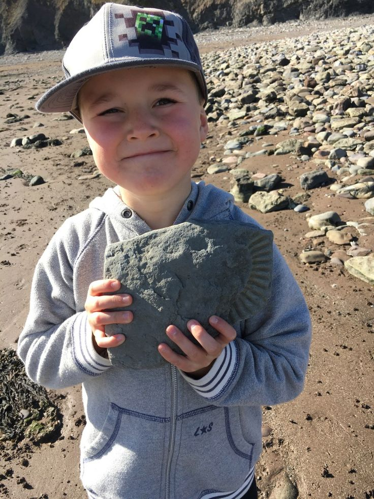 Our favourite beaches for Fossil Hunting in Dorset