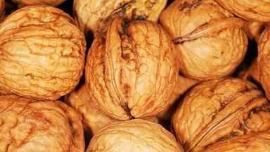Jak uchovat vlašské ořechy? Známe 4 ověřené způsoby