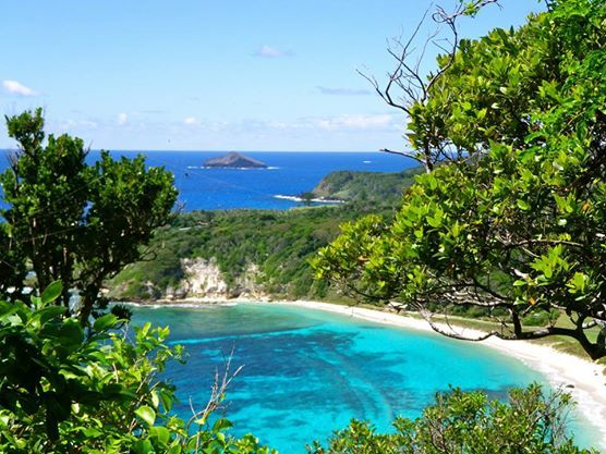 One of the many rewarding views from the track to Malabar.  http://www.lordhoweisland.info/