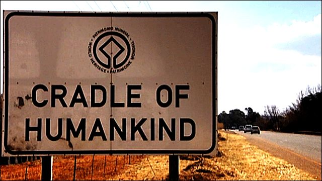 Cradle of Humankind, South Africa, just outside of Johannesburg. The area has been called the Cradle of Humankind because it has a number of sites containing the fossilized remains of some of the earliest members of the human family (early hominids), as well as stone, bone and horn tools.