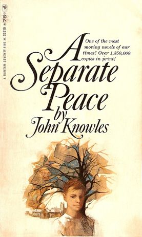 What is a good hook for my essay on A Separate Peace?