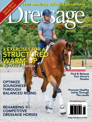 How to calm your sensitive, high-energy partner with straightforward dressage exercises for the hot horse at every dressage level.
