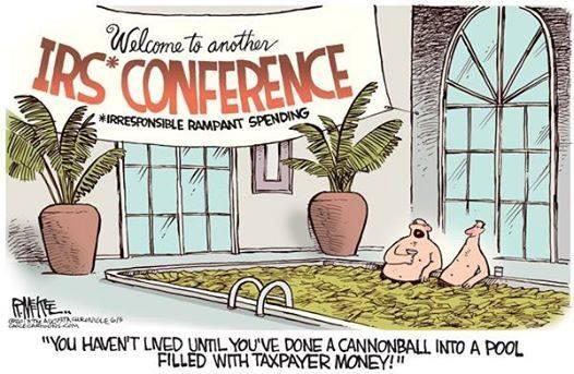 IRS Bullshit!Ir Conference, Shhhhhhh Politics, Government America, Government Area, Conference Colors, Politics Cartoons