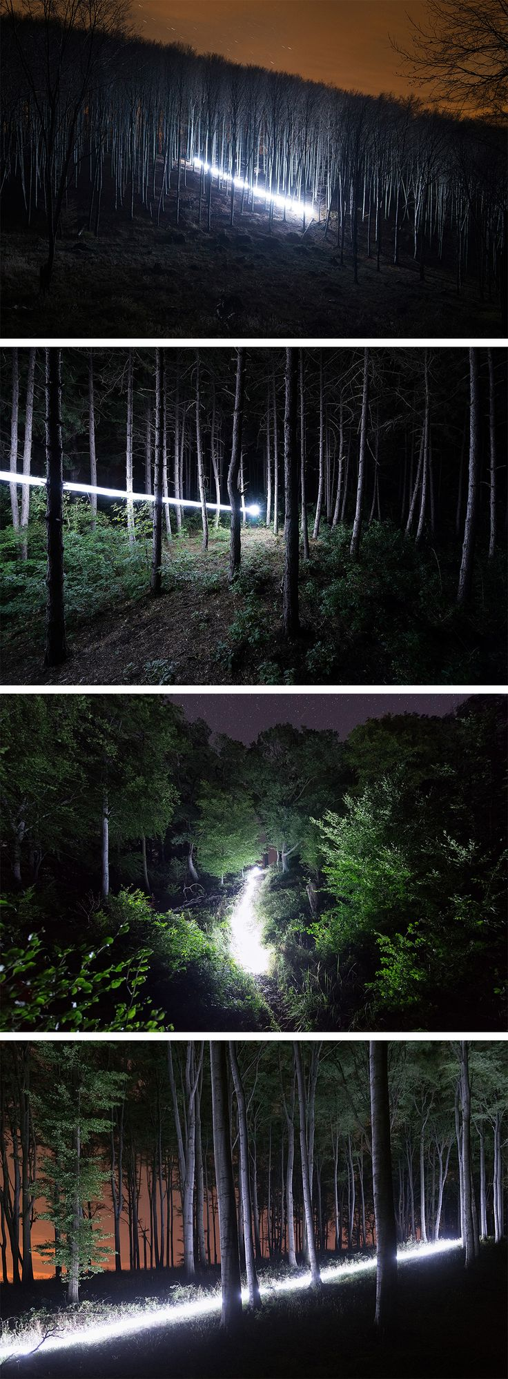 Streaks of Light Illuminate Hungarian Forests During a Full Moon by David Lados