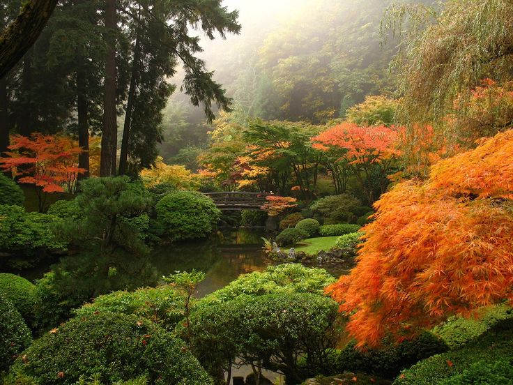 Garden Design Oregon 99 best gardening ~ japanese gardens images on pinterest