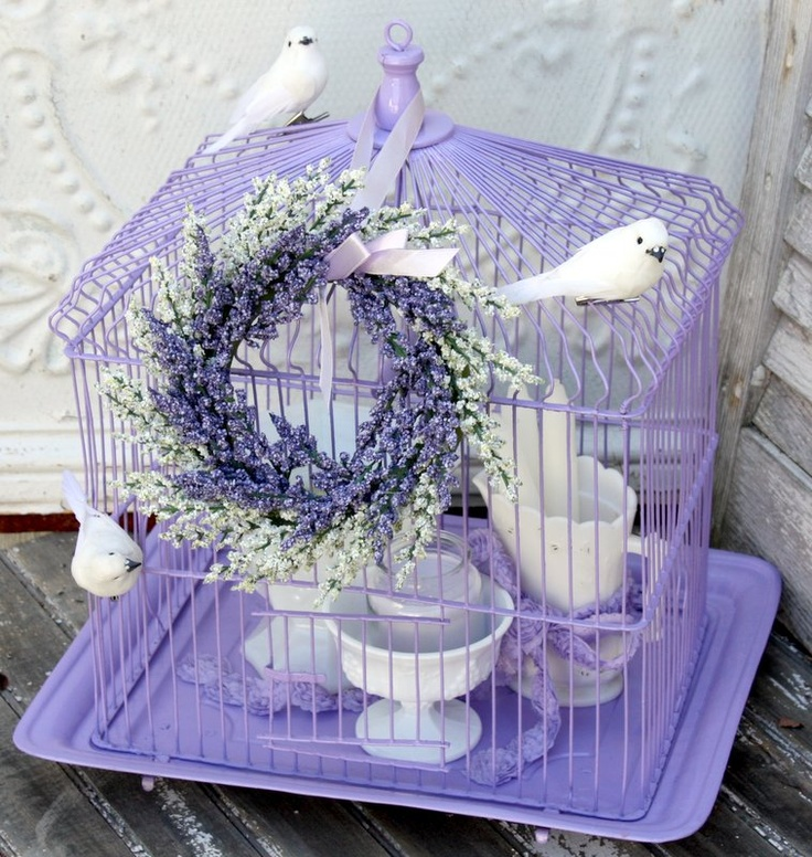 1000+ Images About Bird Cages/houses On Pinterest