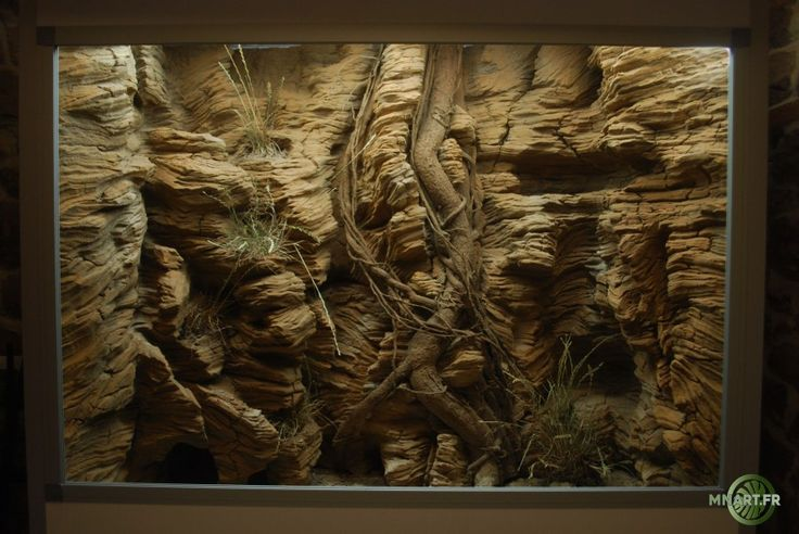 Mnart créateur fabricant de décor désertique, tropicale, terrarium, terrarien, fausse roche, aquaterrarium,décor en résine, Alsace