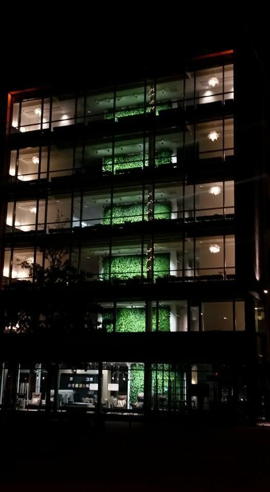 Green Fortune plantwalls, vertical garden over 6 floors in Malmö, Sweden. Looks great from the outside as well. Groene wand, Pflanzenwand.