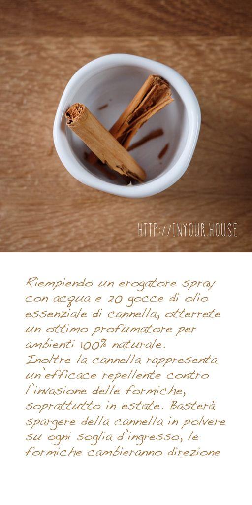 Usi alternativi delle #spezie. #cannella #cucina #casa #guida #consigli