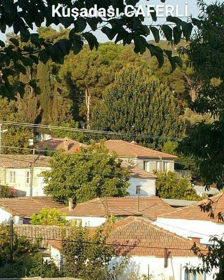 Aydın kuşadası caferli köyü