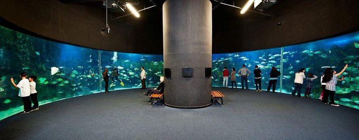 270 degrees panoramic view @ Turkuazoo Aquarium