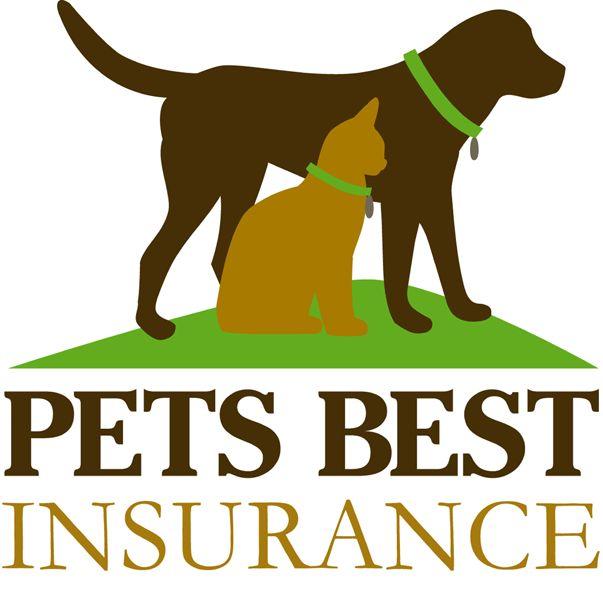 best dog health insurance reviews