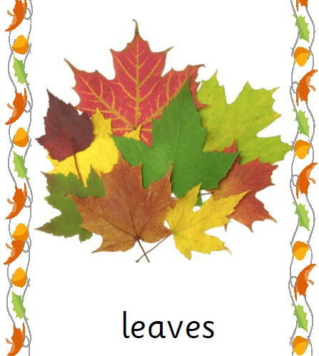 Words and pictures for printing and laminating for using on an Autumn themed display. All in Sassoon Infant font