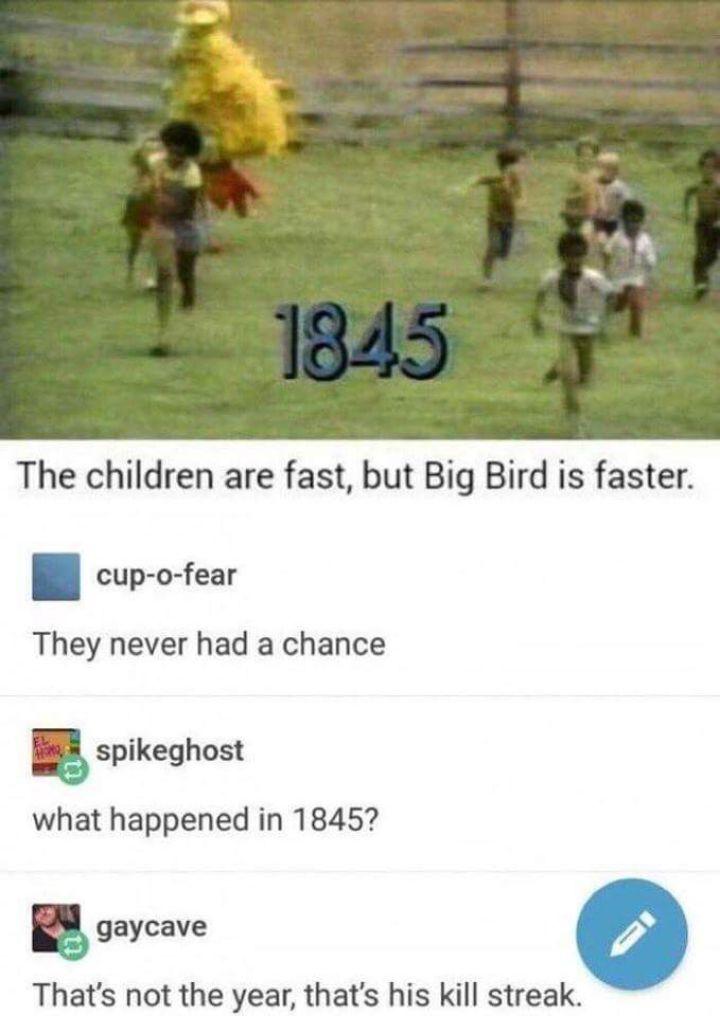 Big bird is on a major killstreak