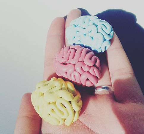 http://missgoldenwings.wix.com/diy- DIY adorable bijoux brain cerveau creepy goth cute diy fimo fun funny goth grunge kawaii mignon mini brain pastel pastel goth polymer clay pâte polymère sculptey