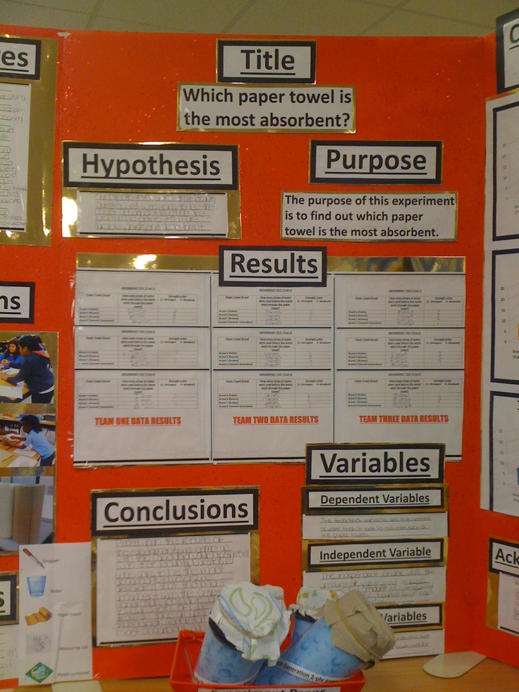 science project variables