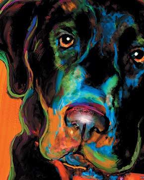 Rebecca @ Art Paw does amazing pet portraits...kinda expensive, but I wonder if I could attempt this for Naveen.