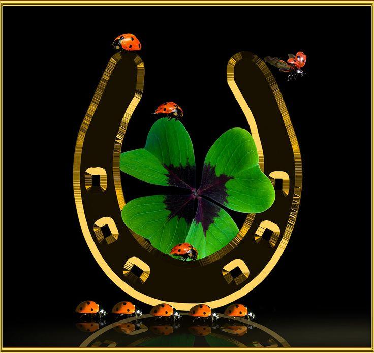 Symbol, szczęście, szczęśliwa koniczyna, koniczyna czterolistna