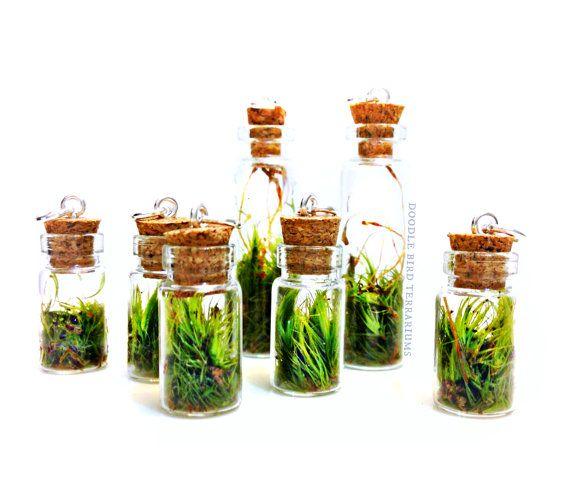Live Moss Mini Terrarium Pendant 1 Necklace Charm by DoodleBirdie                                                                                                                                                     Mais