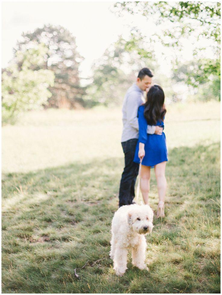 fine art photographer toronto, engagement session with a dog, toronto engagement session