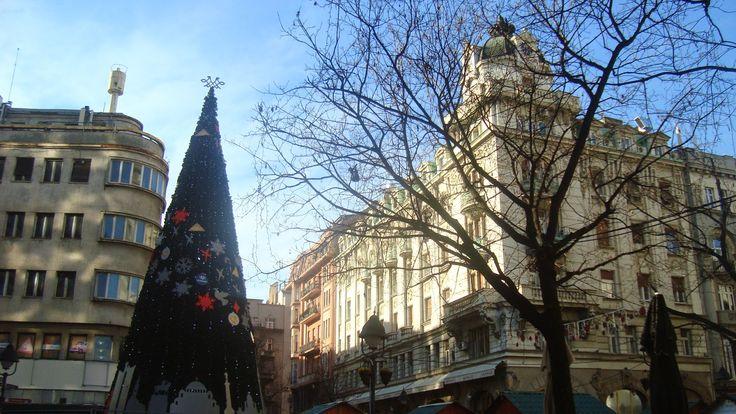 Visitez Belgrade (Виситез Белград) Le sapin dans le centre ville