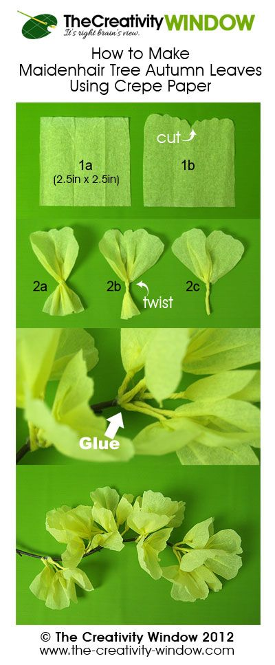 Easy crepe paper craft. How to Make Ginkgo Biloba Autumn Leaves Using Crepe Paper – a.k.a. Maidenhair Tree Autumn Leaves.  Read the detailed procedure at  http://the-creativity-window.com/2012/09/ginkgo-biloba-autumn-leaves/