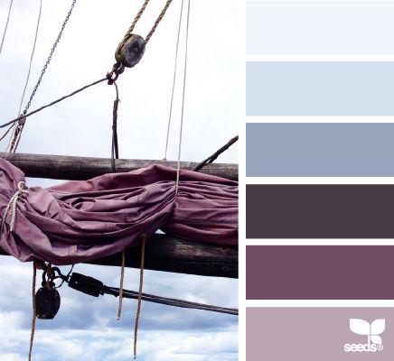 Nuances de violet et bleu / Purple and blue