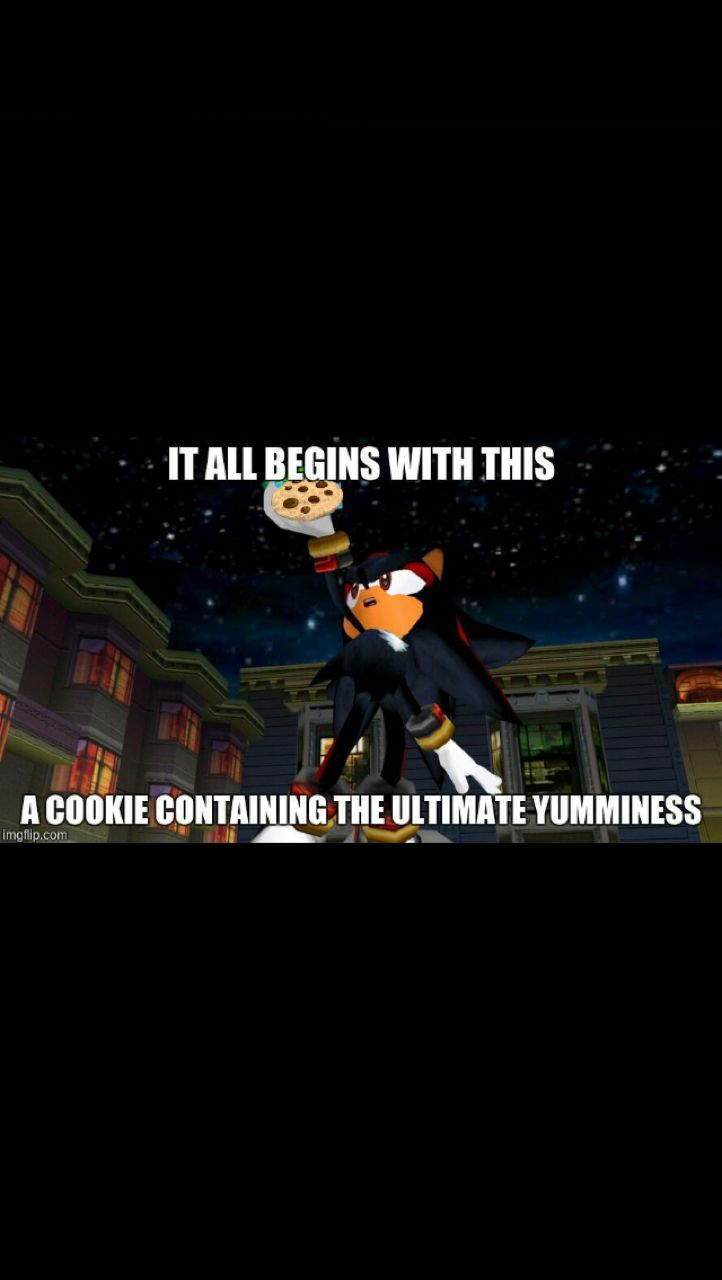 Pin By Elleigh Buhlig On Sonic Memes Sonic Franchise Sonic The