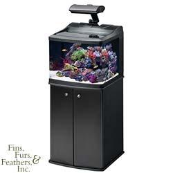 Best 200 aquariums images on pinterest fish tanks for 29 gallon fish tank dimensions