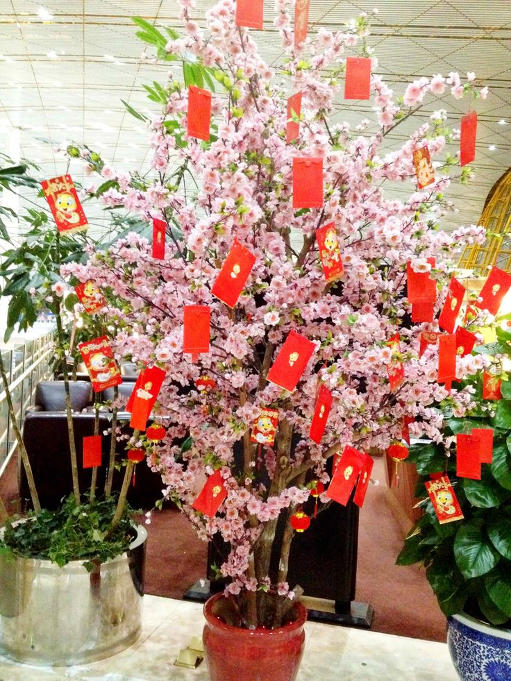 The 25 best happy chinese new year ideas on pinterest for Ang pao decoration