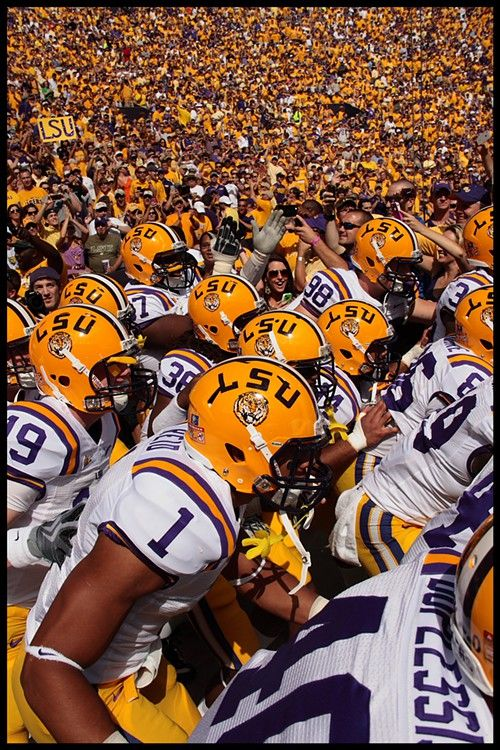 Musings of an Artist's Wife: LSU Football: A Personal History