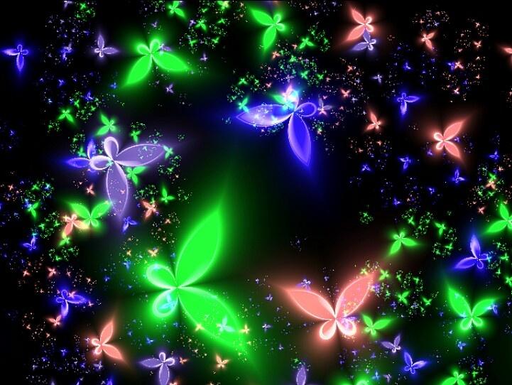 Neon Butterfly   Butterflylvr   Pinterest   Neon and ...3d Neon Butterflies