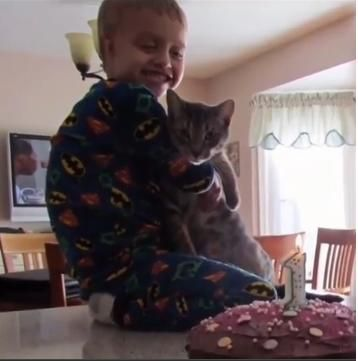 A neutered and declawed indoor cat named Tails became lost last week while the owners were having work done inside their Florida home. OwnerChelsea Santoro began putting up Lost Cat posters aroun...