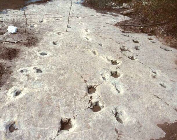 Here is a mystery nobody wants to touch. In a riverbed in Paluxy, Texas, archaeologists have found both dinosaur tracks and human footprints together. Both made at the same time. And, not just one track, but dozens. All the tracks are the same age, about 140 million years old, and they were made together.