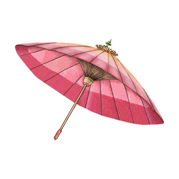 tubes accessoires ❤ liked on Polyvore featuring accessories, umbrellas, umbrella, asian, oriental, objects and animal umbrella
