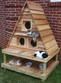 Quality Cat Kennel Choices for the Comfort and Safety of Your Cat