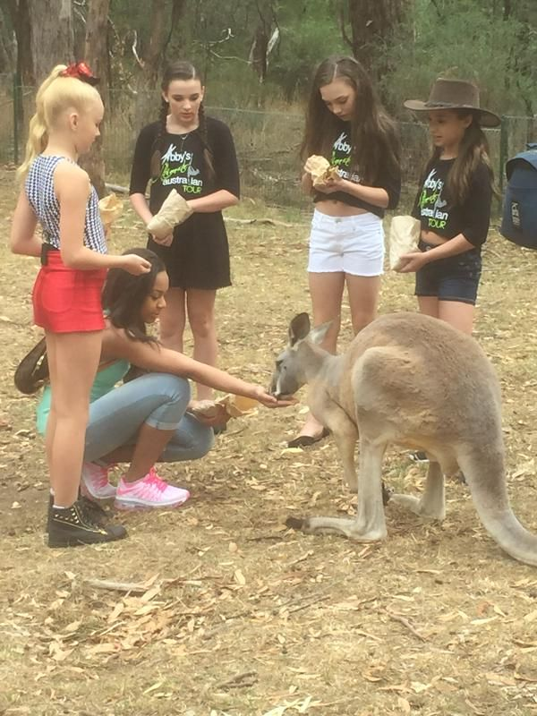 hanging with the roos