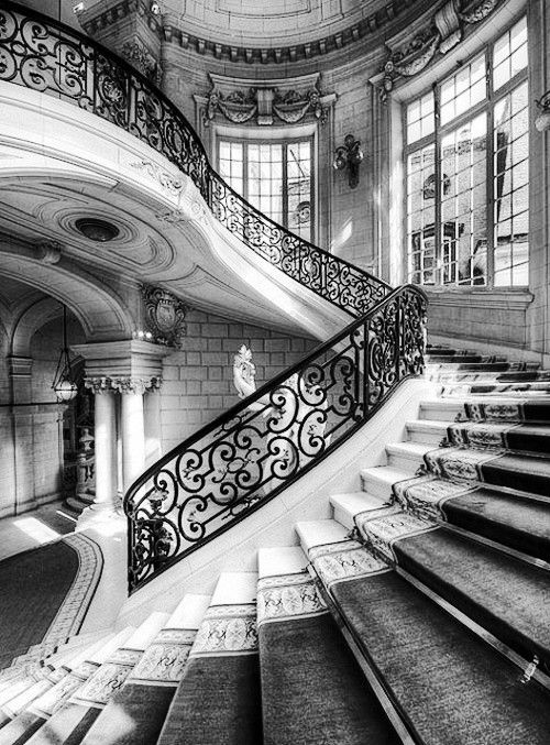 : Spirals Stairca, Stairs, Dreams, Royals Blue, Carpets, Great Stairca, Versail France, The Beast, Stairways
