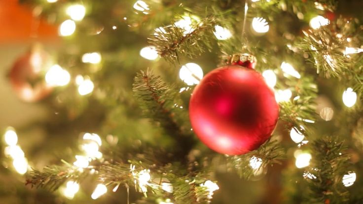 5 Tips on Making a Festive Holiday Video For Your Small Business   Social Media Today