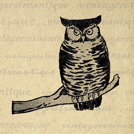 Digital Image Owl Printable Antique Graphic Bird Download