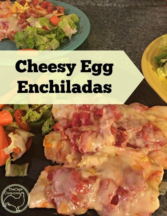 Cheesy Egg Enchiladas - The Cape Coop
