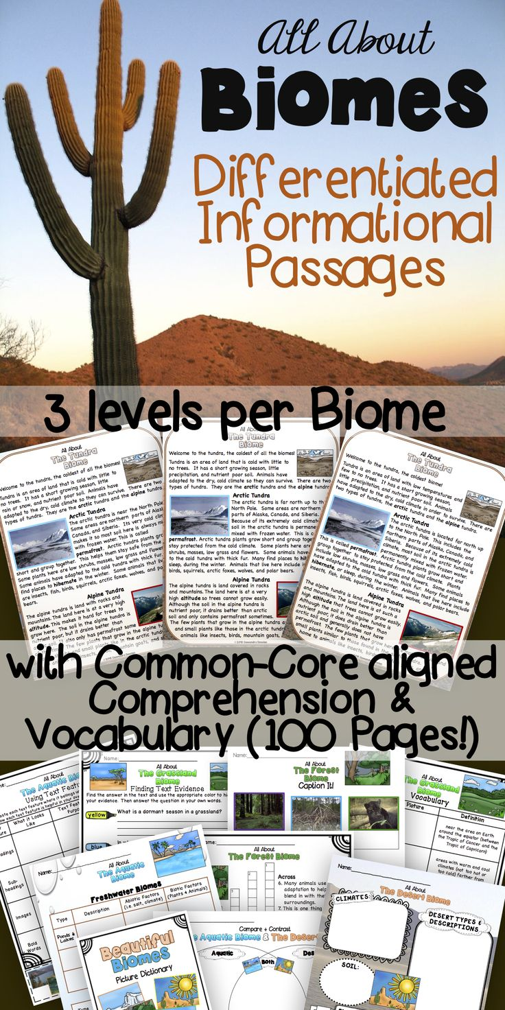 Explore the world's biomes with this Biomes Unit! 100 Pages of quality differentiated reading passages (3 levels Lexile 750-1050), vocabulary, and comprehension activities! Common Core aligned Grades 3-6.
