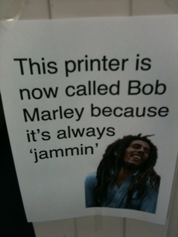 .Work Humor, Bobmarley, Offices Humor, Offices Spaces, Bobs Marley, Funny, The Offices, Work Places, Bob Marley