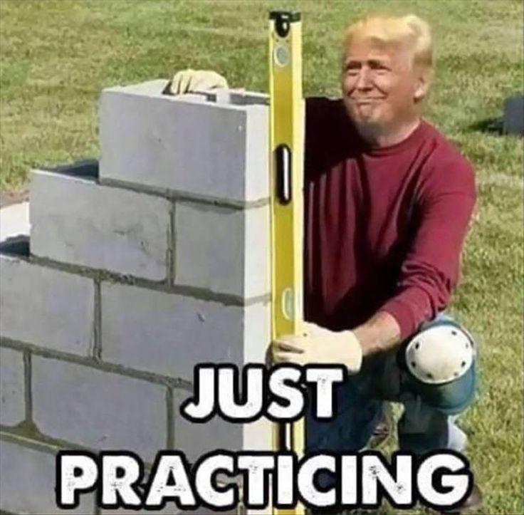 eb7fe8d158e12f465553acc62966c435 funny trump memes hilarious donald oconnor 171 best trump humor images on pinterest ha ha, funny stuff and